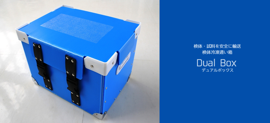 Dual Box